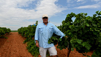 Real Texas Wine High Plains Imagery1